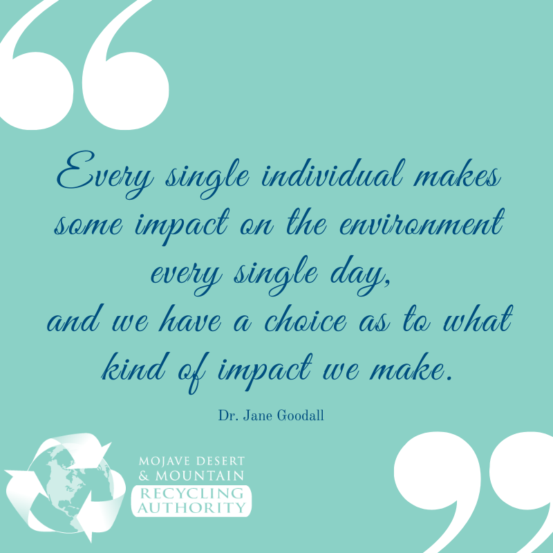 Dr. Jane Goodall Quote