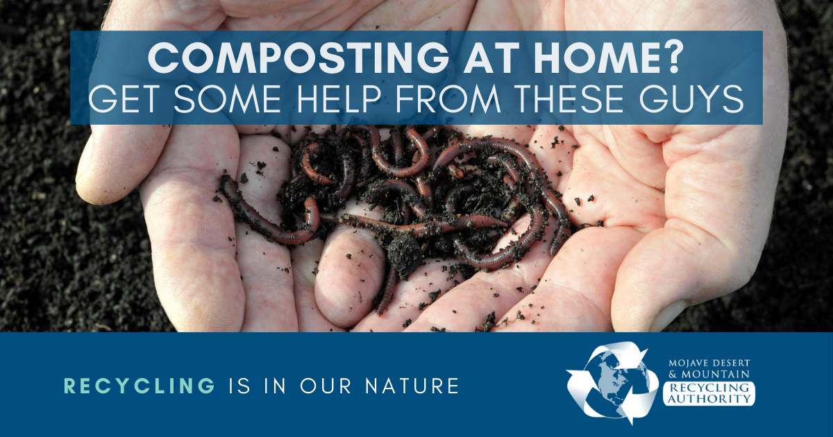 Composting with Worms