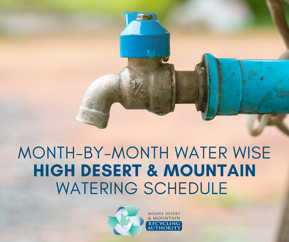 Month-by-month water landscaping